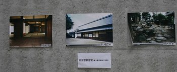 IMG_4624-1.jpg